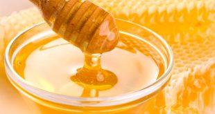 مكونات العسل و صفاته و هو يعد أحد أهم منتجات خلية النحل