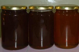 العسل الجبلي اللون الغامق و القوام الكثيف