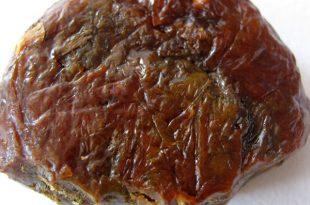 العكبر صمغ النحل ( البروبوليس ) مما يتكون ما استخداماته و الوانه