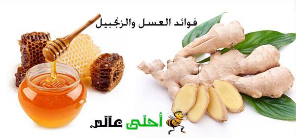 فوائد العسل والزنجبيل
