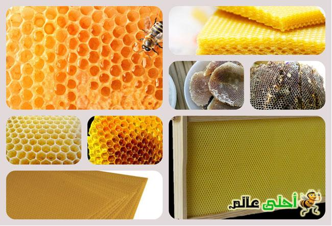 الوان شمع النحل, لون شمع العسل, ماهي الوان الشمع, شمع العسل, شمع النحل, الوان اساسات الشمع, شمع العسل الاصلي, احلى عالم, نحلة احلى عالم