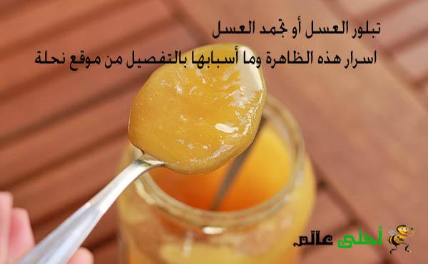 تبلور العسل أو تجمد العسل اسرار هذه الظاهرة وما أسبابها بالتفصيل من موقع نحلة