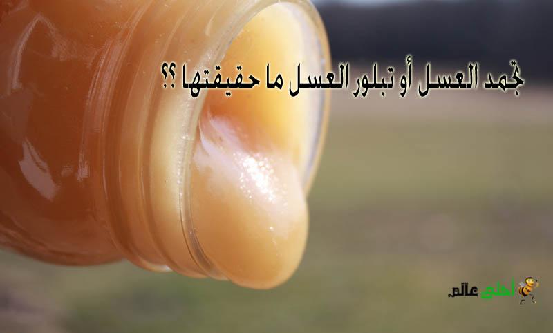 تجمد العسل أو تبلور العسل ما حقيقتها هذه الظاهرة و ألية حدوثها من موقع نحلة أحلى عالم