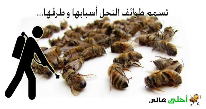 تسمم طوائف النحل أسبابها و طرقها من موقع نحلة احلى عالم
