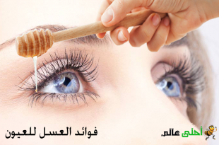 العسل للعيون,العسل,فوائد العسل للعيون,العسل لعلاج التهاب العين,العسل لإلتهاب الجفون,التكحيل بالعسل, العسل على العين, استخدامات العسل, احلى عالم