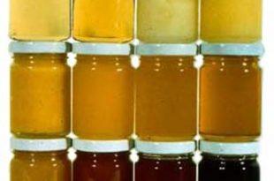 لون العسل,العسل,فوائد العسل,انواع العسل,العسل الغامق,العسل الفاتح,أنزيمات العسل,الأملاح المعدنية بالعسل,جودة العسل