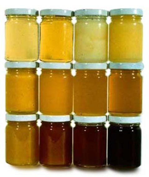 لون العسل مصدره و العوامل الداخلية المؤثرة فيه
