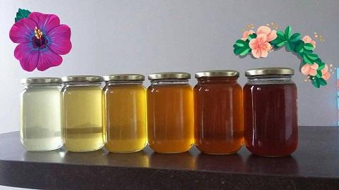 ألوان العسل المختلفة والعوامل الخارجية المؤثرة فيها