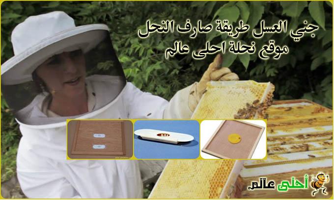 جني العسل طريقة صارف النحل موقع نحلة احلى عالم
