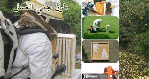 طرق جني العسل ,خلية نحل العسل, العسل, جني العسل, طرق قطف العسل, طرق جمع العسل, تنظيف الخلية من النحل, طارد النحل, صارف النحل, موقع نحلة, احلى عالم, كيف اطرد النحل من العاسلة, تنظيف العاسلة من النحل