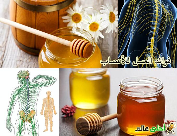 فوائد العسل للأعصاب, العسل للاعصاب, العسل للجهاز العصبي, العسل والاعصاب, فوائد العسل للاعصاب, عسل, العسل, نحلة, موقع نحلة, أحلى عالم, عسل الاعصاب, علاج الاعصاب بالعسل, اهم علاجل للاعصاب, علاج تلف الاعصاب, علاج مرض الاعصاب,