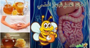 فوائد العسل, العسل , العسل للمعدة, العسل للأمعاء, العسل للجهاز الهضمي, عسل, فوائدة العسل, علاج القولون, العسل للقولون, علاج المعدة, فوائد العسل للجهاز الهضمي ,موقع نحلة ,احلى عالم